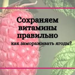 как необходимо замораживать ягоды, чтобы сохранить витамины?